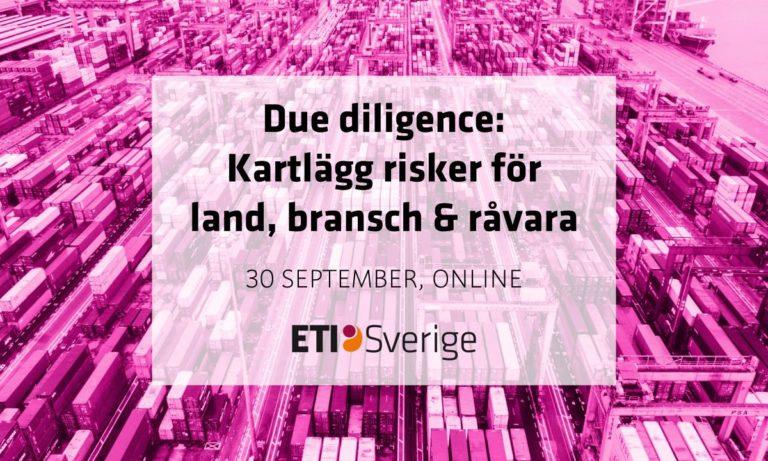 Due diligence: Kartlägg risker för land, bransch & råvara